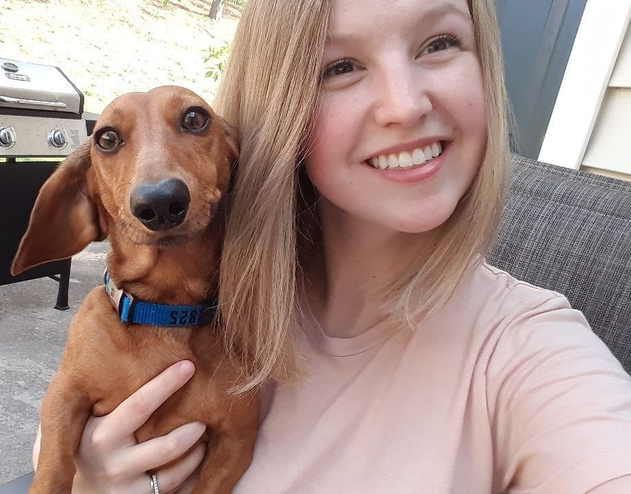20 Benefits Of Being a Dachshund Owner You Didn't Know 5