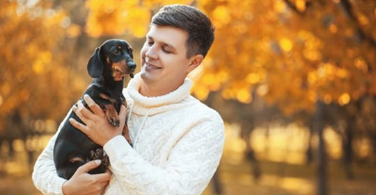 6 Reasons To Love A Man Breeding A Dachshund