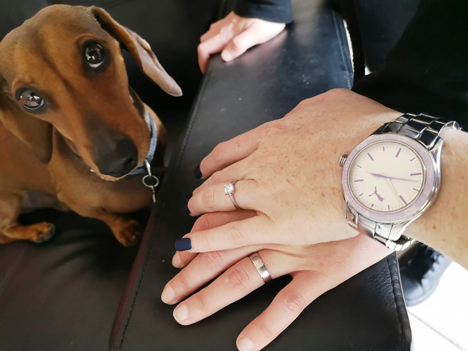 Can Dachshunds Recognize A Good And A Bad Person? 1