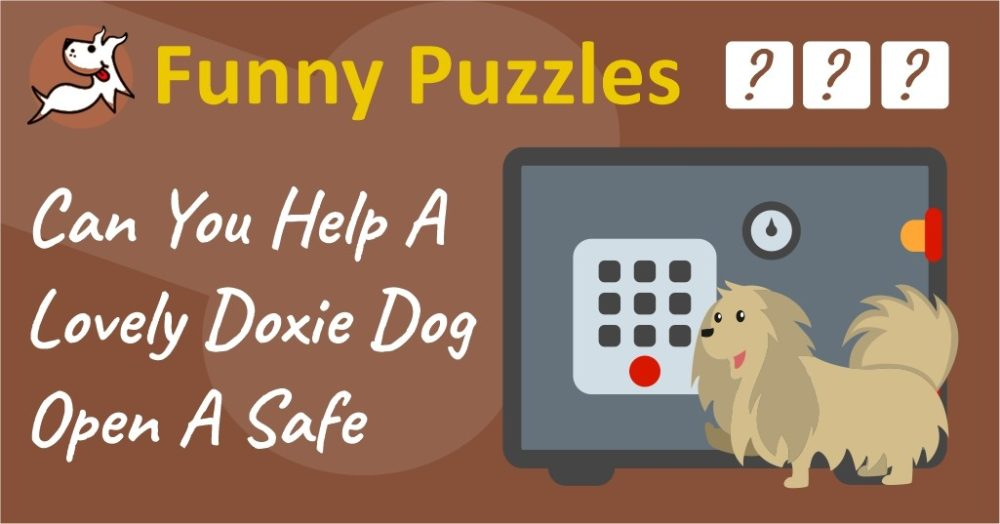 Can You Help A Lovely Doxie Dog Open A Safe? Only Geniuses