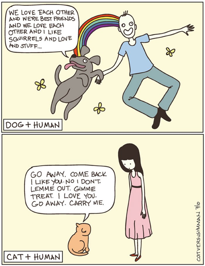 The Difference Between A Dog Person And A Cat Person That Only Insiders Understand 3