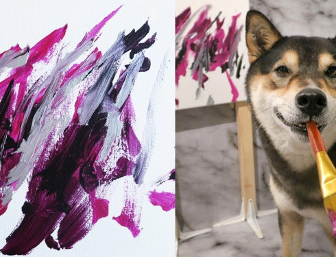 A Shiba Dog Can Paint And Help His Owner Earn $5,000