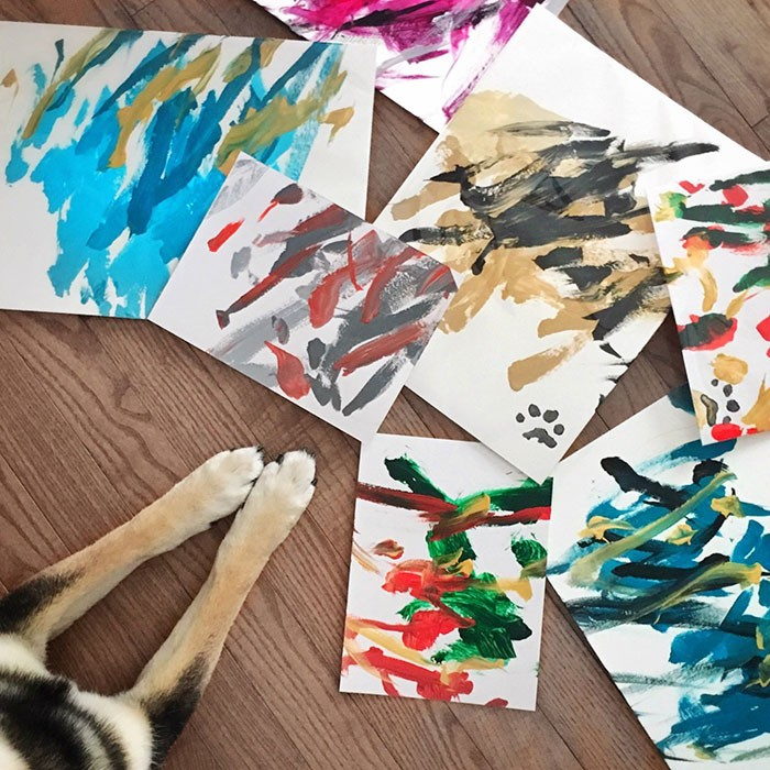 A Shiba Dog Can Paint And Help His Owner Earn $5,000 3